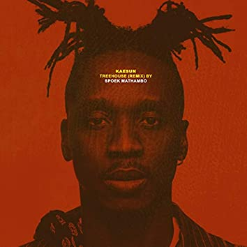 Treehouse (feat. Spoek Mathambo) [Spoek Mathambo Remix]