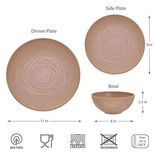 bzyoo BPA-Free Dishwasher Safe Eco Friendly Rice Bran Mix Melamine Designed Dinnerware Set Best for Indoor and Outdoor… Salted Salad