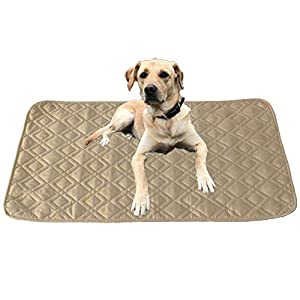 RBSC Home Dog Bed Cover Pet Mat Waterproof Anti-Slip 2 Pack 30×30 Inch Floor Mats for Sofa, Car, Couch, Furniture Protector