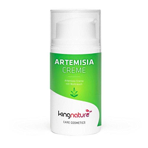 Kingnature Artemisia Creme - 30ml Aloe Vera Gel mit Artemisia-Extrakt und Weihrauch (entzündungshemmend)