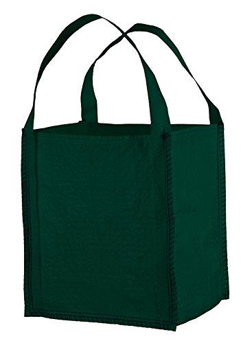 MINI BIG BAG grün, TRAGKRAFT 300 KG 40 x 40 x 45 cm, 2 SCHLAUFEN