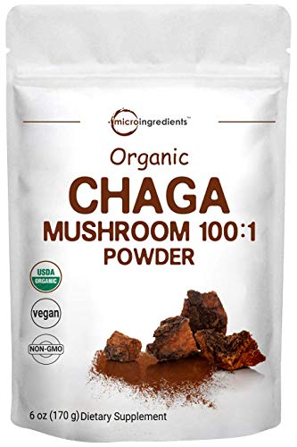 Sustainably Maine Grown, Wild Harvest Organic Chaga Mushroom Extract 100:1 Powder, 6 Ounce (170 Grams), for Immune System and Energy, Superfood for Beverage and Smoothie, Vegan Friendly