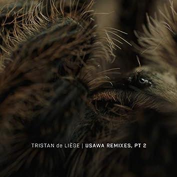 Usawa Remixes, Pt. 2