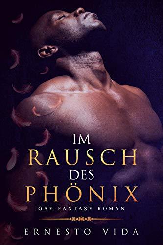 Im Rausch des Phönix: Gay Fantasy Roman