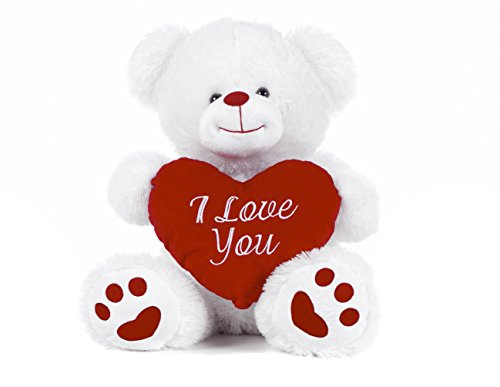 White Teddy Bear holding Red Heart with 'I Love You' written on it (White, 10.5')