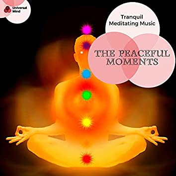 The Peaceful Moments - Tranquil Meditating Music