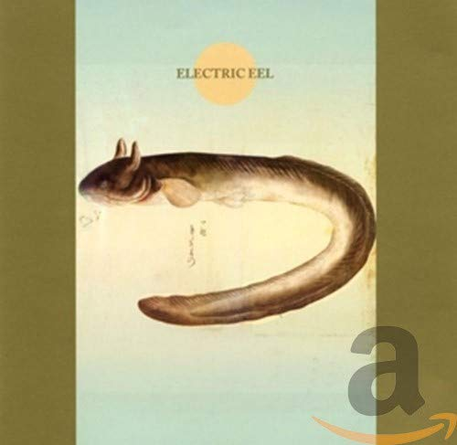 Cover ELECTRIC EEL