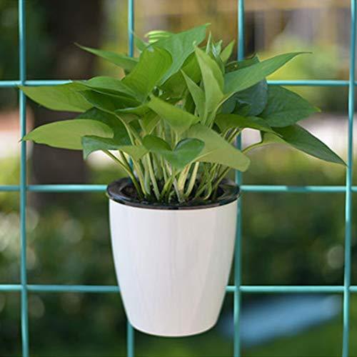 Fenghezhanouzhou Pots de Fleurs Paresseux Radis Vert Absorbant l'eau automatiquement Pilules de Viande Hydroponics Résine Circulaire en Plastique Pots de Fleurs en Plastique