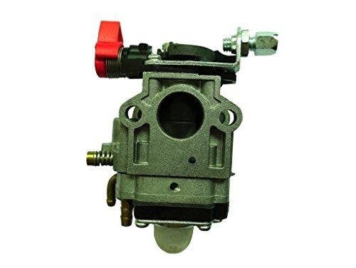 Carburador para CG430520desbrozadora Efco–753–755–453reemplaza Walbro estilo