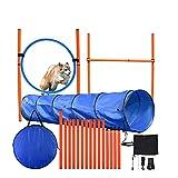 Vogvigo Dog Agility Equipment Set, Agility Direction Training, Haz Que tu...