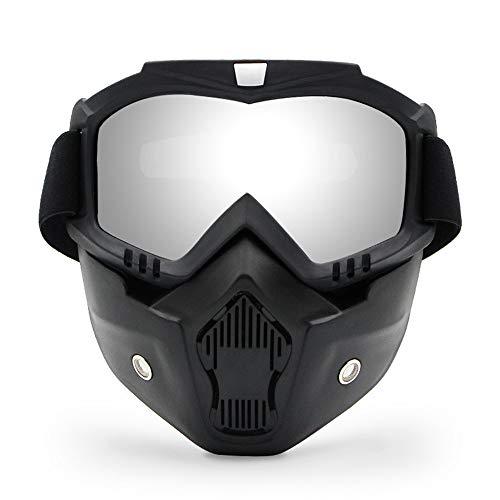 FA.cbj3 Máscara facial desmontable de las gafas de la motocicleta, Máscara de las gafas de ATV de la bici de la suciedad de la motocicleta, Gafas de sol, Gafas de moto UV