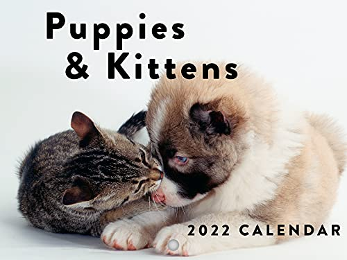 Puppies and Kittens 2022 Wall Calendar Cute Funny Baby Animals Cats Dogs Calendar Large 18 Month Calendar Monthly Full Color Thick Paper Pages Folded Ready To Hang Planner Agenda 18x12 inch