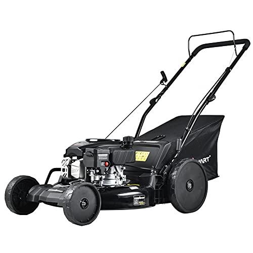 PowerSmart DB8621S Gas Self Propelled Mower