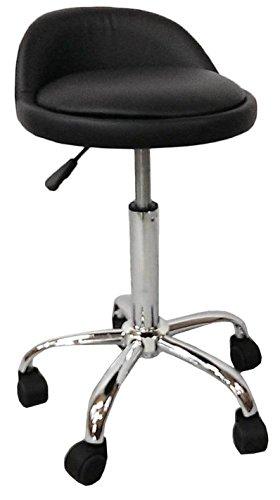DevLon NorthWest Salon Stool with Back Rest Saddle Hydraulic Spa Stool (BLACK)
