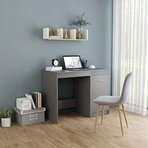 UnfadeMemory Schreibtisch Arbeitstisch Spanplatte Computertisch mit 1 integriertem Schrank PC Laptop Tisch für Home Office und Büro 100 x 50 x 76 cm (Grau)