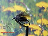 Nassfliegen 'Black Peacock Spider' 3er Set, Hakengre 14
