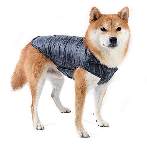 Dociote Hund Winterjacke Wintermantel mit Kragenloch & Klettverschluss Baumwolle Gepolstert Hundemantel Weste für kleine mittelgroße Hunde L Schwarz