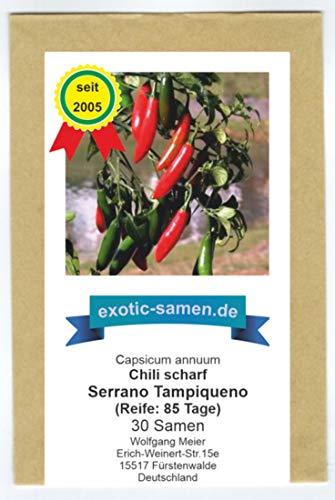 Das beliebteste Serrano-Chili in Mexiko - Serrano Tampiqueno - 30 Samen