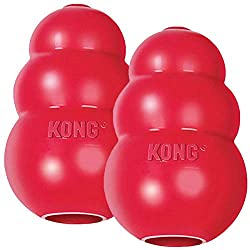 The Kong Chew Toys