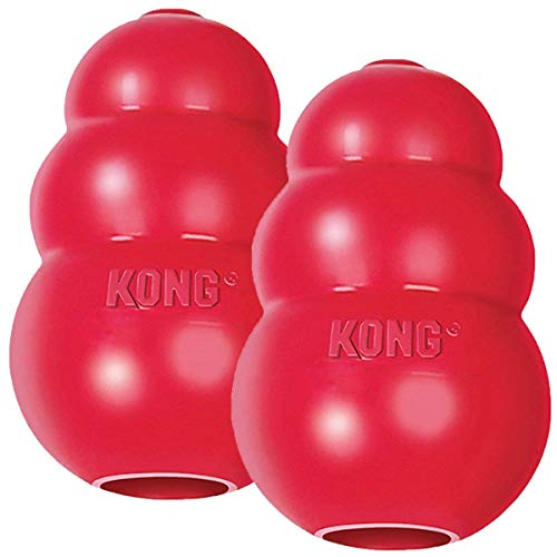 2-Pack Large Kong Classic
