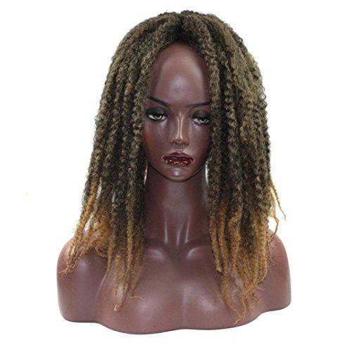 URSING Lace Front en Fibre Synthétique Long Curly Top Qualité pour les Femmes Femmes longues Bouclées Ondulé Haute Qualité Résistant à La Chaleur Synthétique Comme les Vrais Cheveux Humains(43cm, E)