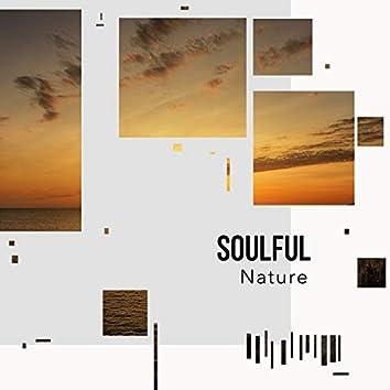 Soulful Nature, Vol. 19