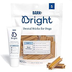 BarkBox Bright Toothpaste & Toothbrush Chews Kit - Dental Treats for Dogs and Cats | Vet-Recommended | Freshens Breath & Reduces Plaque Buildup | Made with Real Chicken | Small Kit