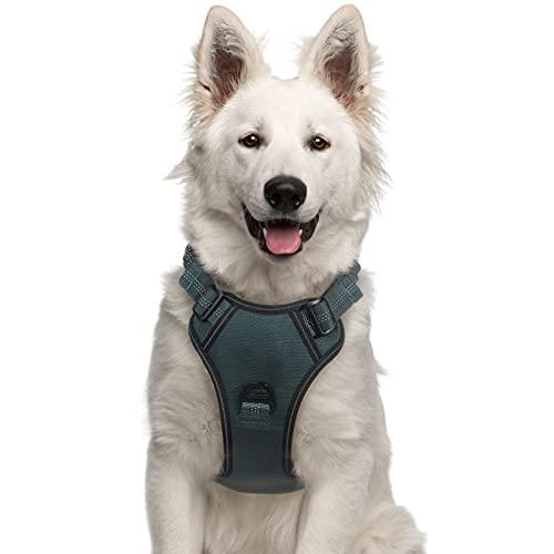 rabbitgoo Hundegeschirr Anti Zug Geschirr atmungsaktiv und weich, einstellbares Brustgeschirr mit Kontrolle Griff, reflektierendes Laufgeschirr für mittlere und große Hunde