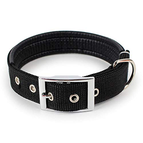 LCZMQRCLMZRQ Kleine en middelgrote grote hond dierbenodigdheden transfer verstelbare nylon stevige halsband gesp huisdier halslijn huisdier halsband, BK, L