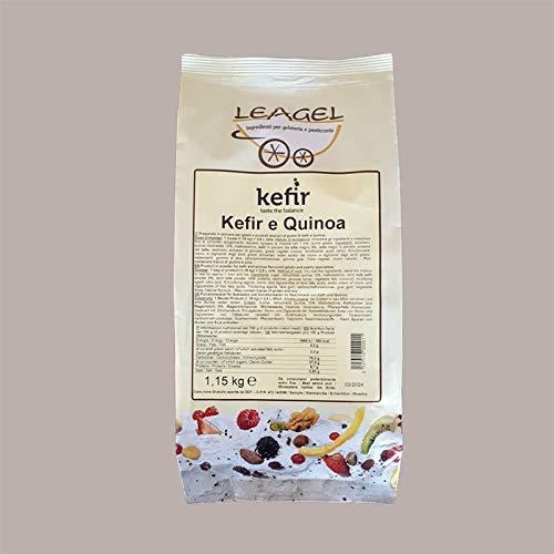 Leagel 1 kg Preparado concentrado en polvo con sabor KEFIR y QUINOA para helados, repostería y postres