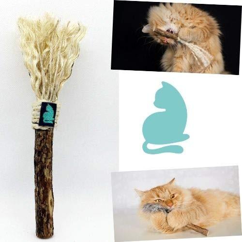 Barfeli Matatabi Katzenstab Stick mit Sisal - 100% Naturprodukt aus extra dickem Matatabi Holz - Katzen Zahnbürste - Katzenspielzeug - Katzenminze
