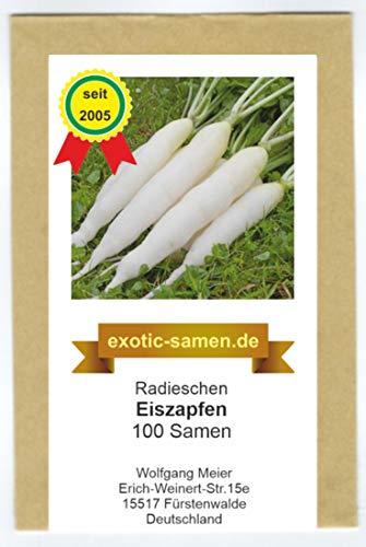 Radieschen - Radies - Eiszapfen (100 Samen)