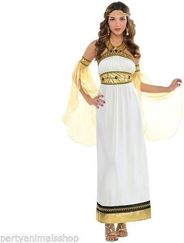 Amscan International Adults Divine Goddess (UK 8-10) by Amscan International