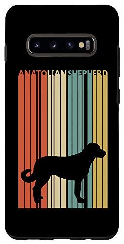 Galaxy S10+ Vintage Anatolian Shepherd Case