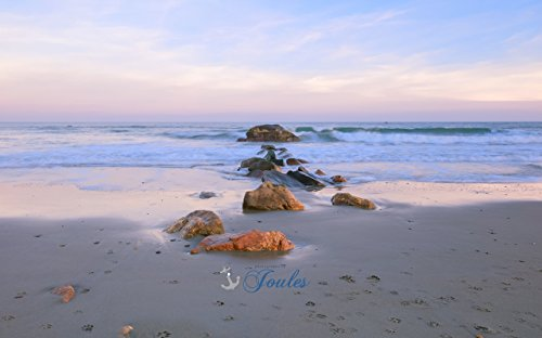 Photograph ~ Paw Prints in the Sand ~ Scarborough Beach ~ Narragansett, Rhode Island