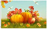 ShineSnow Thanksgiving Harvest Autumn Fall Leaves Pumpkin Apple Dragonfly 3x5 Feet Flag, Polyester Double Stitched with Brass Grommets 3 X 5 Ft Flag for Outdoor Indoor Home Decor
