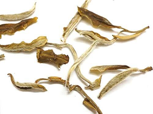 Beantown Tea & Spices - Rare Special Tea Sampler. Aged Snowbud White Tea. Premium Sampler Makes 3 Servings. (Aged Snowbud Tea)
