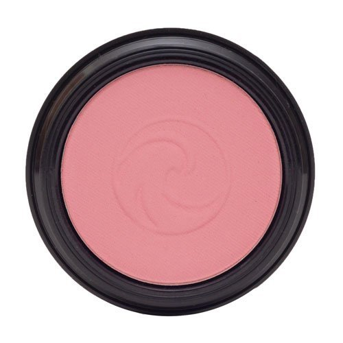 Gabriel cosmetics Blush, 0.17 Ounce,Natural, Paraben Free, Vegan, Gluten-free, Cruelty-free, Non GMO,enhanced with Sea Fennel, Full coverage, creamy and natural finish. (Willow)