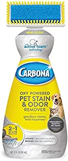 Carbona 2 in 1 Oxy-Powered Pet Stain, Pack of 2