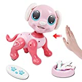 Tuptoel Robots for Kids, Robot Toys Remote Control Robot Interactive Intelligent Walking Dancing Programmable Robot Toys for Kids Girls Age 3 4 5 6 7 8 9 10+
