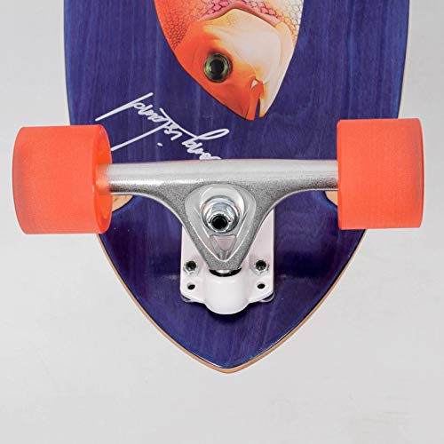 Protecci/ón de Longboard de Skateboarding Osprey 40 x 9 tama/ño 30