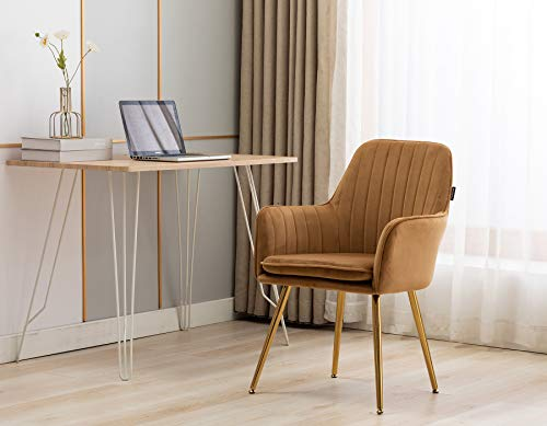 Artechworks Velvet Modern Living Dining Room Arm Chair Club Leisure Guest Lounge Bedroom Upholstered Chair with Gold Metal Legs, Camel Color