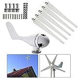 SENDERPICK - Generatore a turbina eolica orizzontale, 400 W, 24 V, a 5 pale, con regolator...