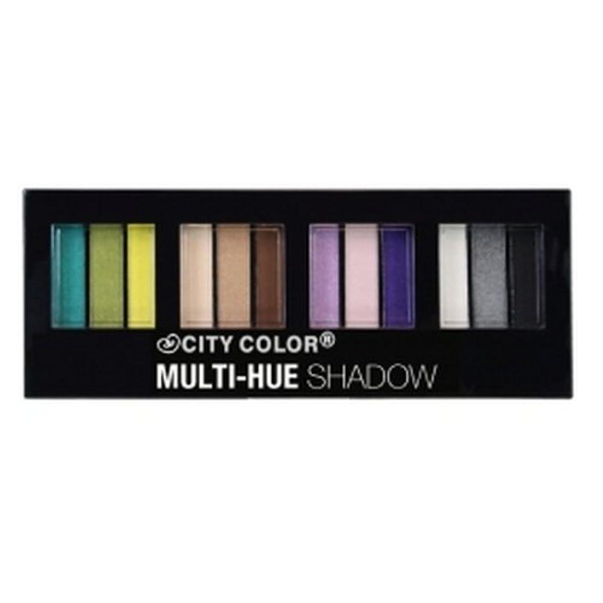 外国人ポータル世論調査(3 Pack) CITY COLOR Multi-Hue Eye Shadow Palette - 12 Shades (並行輸入品)
