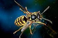 120ピース拡大された蜂子供のためのジグソーパズルジグソーパズル大規模なパズル