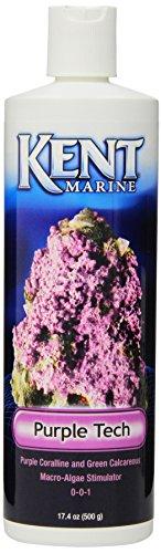 Interpet 700801 Kent Marine Purple Tech-Nahrungsergänzung, 473 ml