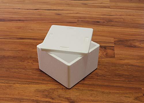 Integra Box Cassa Termica - Scatole in polistirolo EPS per Alimenti Compresa di Coperchio Dimensioni 17 x 17 x 11 cm Volume 1 kg - Ottima per Trasporto Alimenti freschi, surgelati, Torte Gelato.