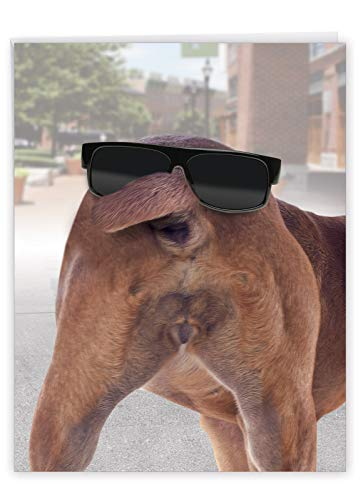Dog Face Birthday Card' Big Greeting Card with Envelope 8.5 x 11 Inch - Dog Tail and Sunglasses, Dog's A$$ Looking At You, Funny Stationery Set for Personalized Happy Birthday Greetings J2574BDG