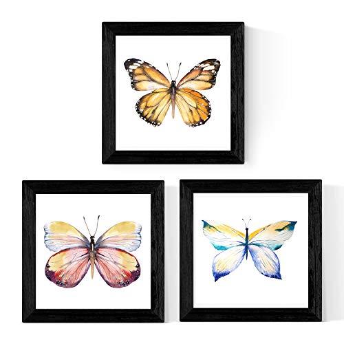 Pack de 3 láminas de Mariposas. Tamaño 25x25