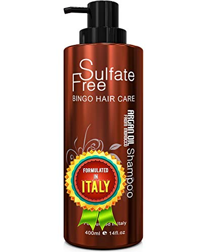 Moroccan Argan Oil Shampoo Sulfate Free - Best for Damaged, Dry, Curly or Frizzy Hair - Thickening for Fine / Thin Hair, Safe for Color-Treated, Keratin Treated Hair, Professional Line